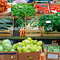 The Pegan Diet information